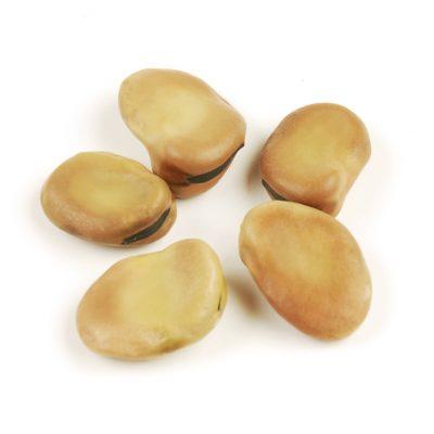 mojo-beans-1413350448-jpg